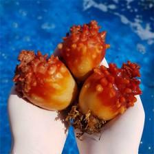 향긋한 남해바다를 담은 남해안 활멍게 (대) 8미내외1kg [남해바다향] 이미지