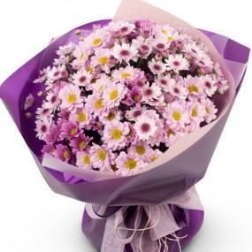 [꽃다발]소국꽃다발(연보라빛) 이미지