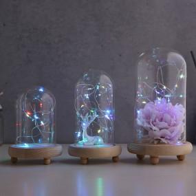 LED 무드 원목 유리돔 6종 이미지