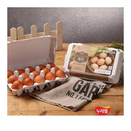 [누리웰] 알맹이가 탱글탱글한 1등급 계란 15구*2팩 / 총30구 이미지