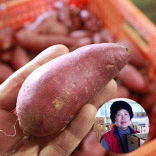 산지직송 류진농장 후숙완료한 세척 꿀고구마 5kg/무료배송 이미지