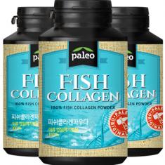 [팔레오]피쉬콜라겐 분말가루 80g x 3통<br>(100% 콜라겐, 초미세입자, 월등한 흡수율) 이미지