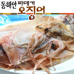 포항 구룡포 박성철님의 촉촉하고 부드러운 동해안 반건조 오징어 800g (10마리) 이미지