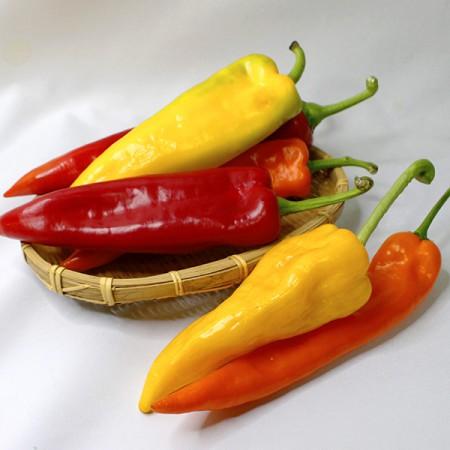 신선농산 김은숙님의 바나나 파프리카 2kg 이미지