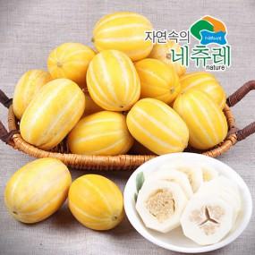 [자연속의네츄레] 성주 꿀 참외 5kg (16~18과)/로얄사이즈 중대과 이미지