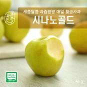 최고의 사과, 시나노 / 그중의 최고!  과일친구 의성 저탄소 GAP 시나노골드(황금사과) 4kg!!! 이미지