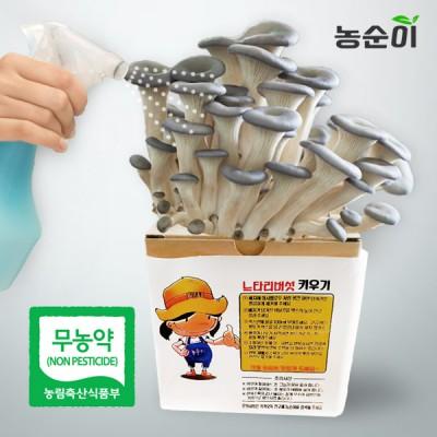 [무농약인증]가정에서 직접 수확하는 버섯 2통 (한통 800g)/4통/8통/12통 구성 택1 이미지