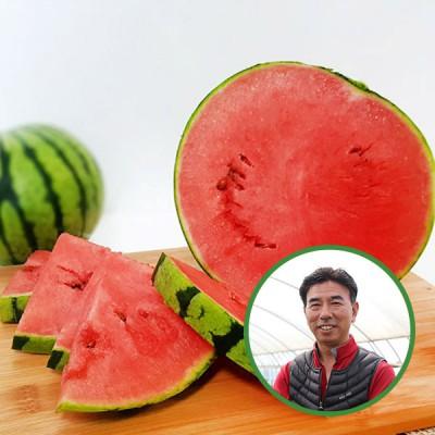 [산지직송] 전북고창 김은주님의 애플수박 2입 가정용2.5kg-3kg/특품3.5kg-4kg