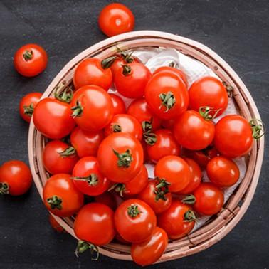 [한아름조합] ★가격인하+무료배송★ 친환경 무농약 대추방울토마토 1.5kg/3kg (옵션선택) 이미지