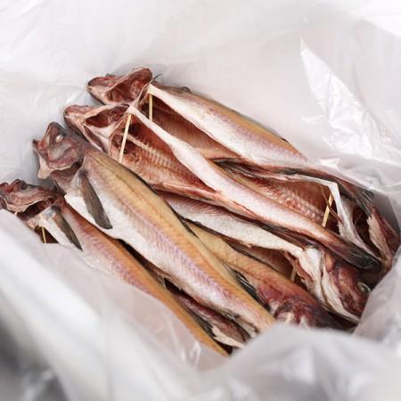 속초 산지직송 반건코다리 43~48cm내외(10미)/ 무료배송 이미지
