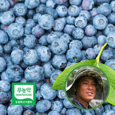 [산지직송] 전북 상주 박대식님의 상주 生(생) 블루베리 500g x2팩(상품/14~16mm내외)/(특품/16mm이상)