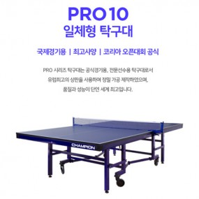 PRO 10 일체형 탁구대 이미지