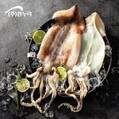 [흰누리]2020년산 싱싱한 국내산 손질오징어 500g(2-3미) 1팩 이미지