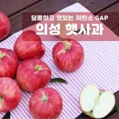 [과일친구]햇사과! 저탄소,GAP 경북의성 햇사과 2.5kg 소과(11~14과) 이미지