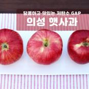 [과일친구]햇사과! 저탄소,GAP 경북의성 햇사과 4kg 중과(15~20과) 이미지