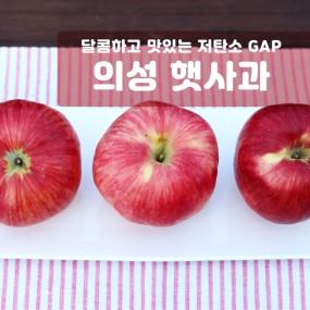 [과일친구]본격햇사과! 저탄소,GAP 경북의성 햇사과 4kg 중과(15~20과) 이미지