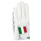 [골프스킨 골프장갑] 이탈리아 - 최상의그립감 미끄럼방지 세탁가능 특수원단 스마트폰터치 (왼손) 이미지
