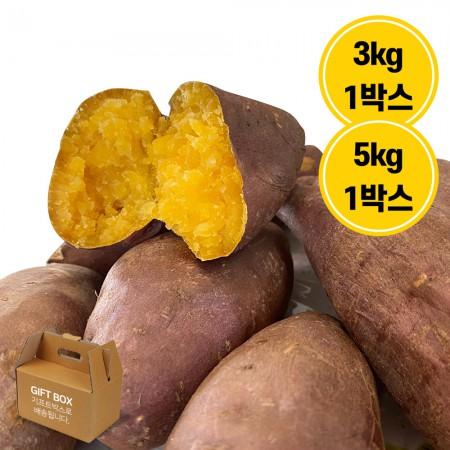 [그린팜] 당진에서 갓 수확한 속노오란 친환경 호박고구마, 달콤 UP! 건강 UP! 3kg/5kg