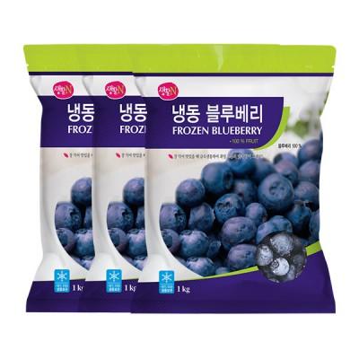 [생활앤] 냉동 블루베리 (미국산) 1kg x 3팩