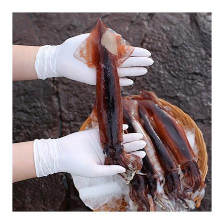 [지팔자] 매일 새벽배 입고! 특가판매 ★제철의 제맛 수산물! 한정수량★ 배에서 곧장 받아 신선하게 보내드립니다. 국산오징어 5마리(총 700~800g 내외) [남해바다향] 이미지