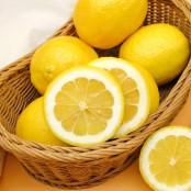 강력한 향과 풍성한 과즙 레몬 중과 10입봉 [키노팜] 이미지