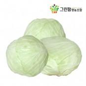 [그린팜] 위에 좋은 카베진 한가득 건강한 친환경 재배 양배추 3kg / 5kg / 10kg 이미지