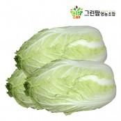 [그린팜] 신선하고 건강한 친환경으로 재배한 통배추 3kg / 6 kg / 9kg 이미지