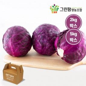 [그린팜] 컬러 푸드의 힘~ 인생에 꼭 먹어야 할 음식재료 1001에 선정된 친환경 재배 적채 (2kg / 5kg) 이미지