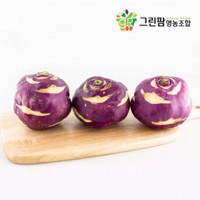 [그린팜] 컬러 푸드의 힘~ 깍아서 생으로 먹어도 일품인 친환경 재배 콜라비 (3kg / 5kg) 이미지