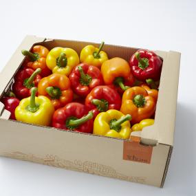 GAP 인증 스마트팜 과일 파프리카 5kg (빨강+노랑+주황 ) [써니너스] 이미지