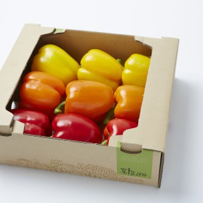 GAP 인증 스마트팜 과일 파프리카 2kg (빨강+노랑) [써니너스] 이미지