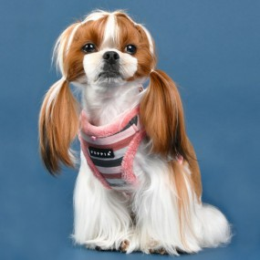 [퍼피아] 강아지 롤리 반려애견 하네스B 2종 (인디안 핑크/네이비) 이미지