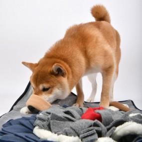 [퍼피아] 강아지 하마 매트 반려애견 노즈워크 (그레이&베이지) 이미지