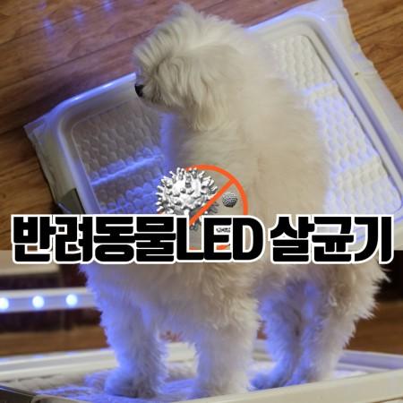 집안해 V2 반려동물 용품 LED 살균기