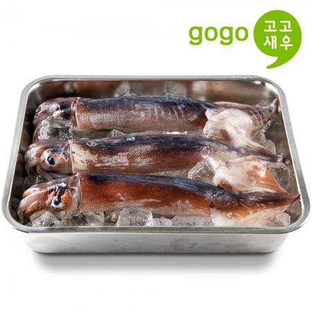 [고고새우] 초코 오징어 선상 동결 통오징어 3미 이미지