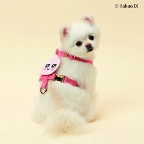 [카카오프렌즈펫] 페이스 강아지 웨이빙 하네스 어피치 라이언 중 택1 이미지
