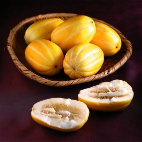 [비타민테이블] GAP인증 프리미엄 성주 꿀참외 로열과 3kg/5kg (무료배송) 이미지