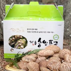 [해남송암표고농장] 해남 송암 유기농 표고버섯 2kg 이미지