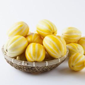 [비타민테이블] GAP인증 실속형 성주 꿀참외 소과 5kg (11과~17과/무료배송) 이미지