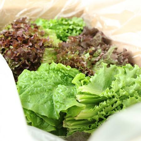 [산지직송] 유기농기능사가 재배한 경북 예천 모듬 쌈 채소(상추포함 13여종) 1kg 이미지