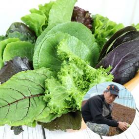 [산지직송] 유기농기능사가 재배한 경북 예천 모듬 쌈 채소(상추포함 13여종) 2kg 이미지