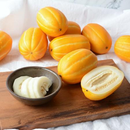 [미미의 밥상] 산지직송 고당도 성주 꿀참외 5kg 사이즈별/가정용