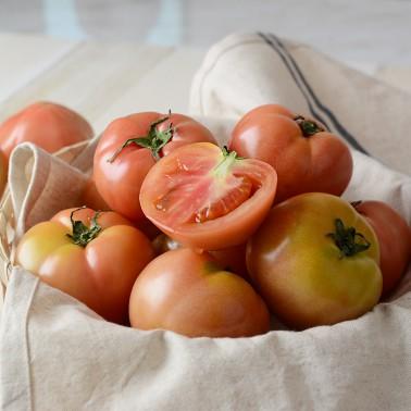 [지팔자]★가성비최고★찰 토마토 2kg(3번과) 중과(로얄과) 이미지