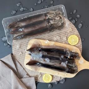 동해 오징어  3-4미 (500-550g) 이미지