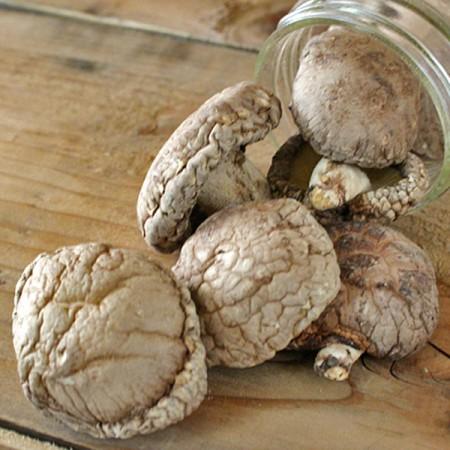 감칠맛나는 맛이 일품인 국내산 유기농 건표고버섯 80g [자연두레] 이미지