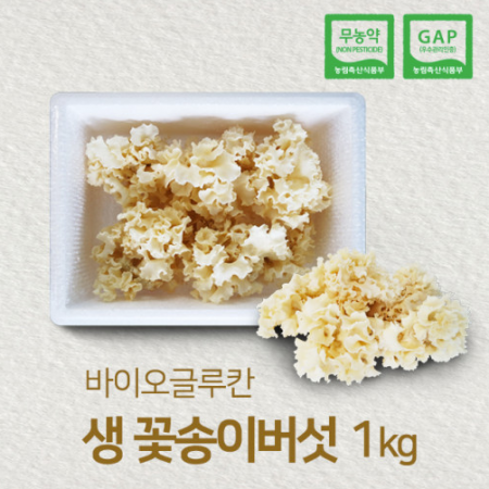 황금꽃송이버섯 이미지