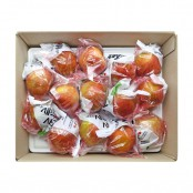 아삭하고 맛있는 세척 사과 2.5Kg (11~14입) [자연두레] 이미지