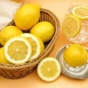 상큼하고 신선한 레몬 중과 10입봉 [자연두레] 이미지
