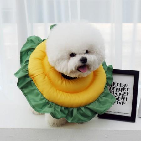 초코펫하우스 강아지 해바라기 넥카라