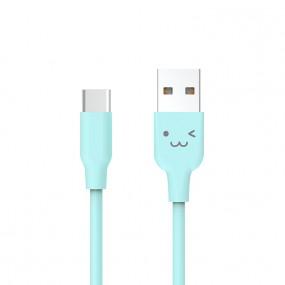 2A USB C타입 데이터 케이블 1.0m 블루 이미지